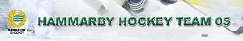 hh_team05_banner_500x.png